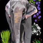 Éléphante d'Asie - François Bachelot
