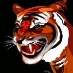 Tête de tigre roux - François Bachelot