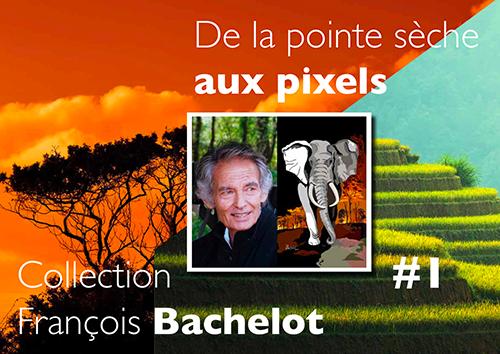Catalogue De la pointe sèche aux pixels - François Bachelot